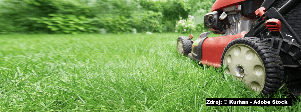 Oprava sekačky: malé problémy s motorem